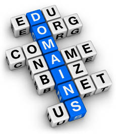 Domainwürfel